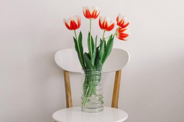 Orange tulpen auf einem weißen stuhl im wohnzimmer. frühling und feiertage.