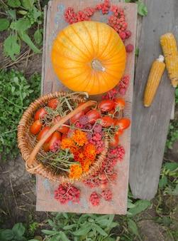 Orange und rot getöntes gemüse