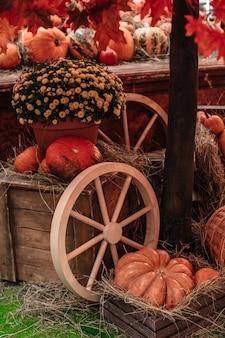 Orangenkürbisse im heu auf dem bauernmarkt erntezeit im herbst halloween thanksgiving