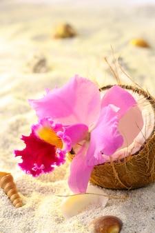 Orchidee innerhalb einer kokosnuss auf hintergrund des tropischen strandes, des sandes und der schnecken.