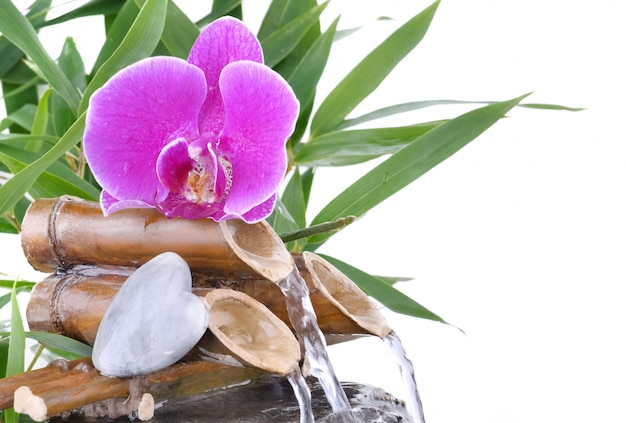 Orchidee und herzförmiger kieselstein auf brunnen