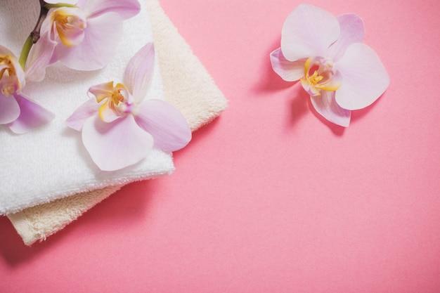 Orchideen auf rosa hintergrund