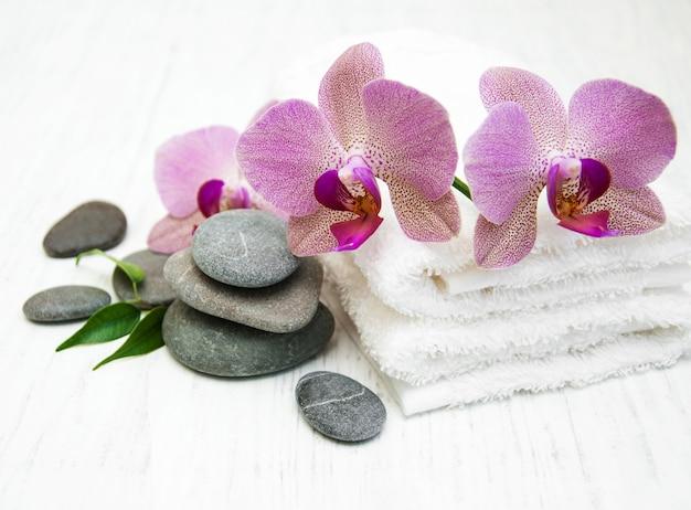 Orchideen spa