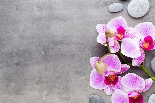 Orchideen- und kursteine auf einem steinhintergrund. spa- und wellnessszene.