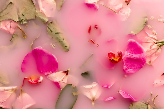 Orchideen und rosen in rosa gefärbtem wasser