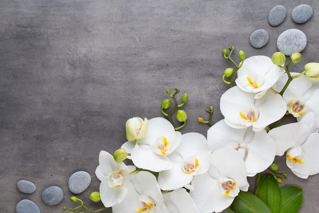 Orchideen- und spa-steine auf stein. flach liegen
