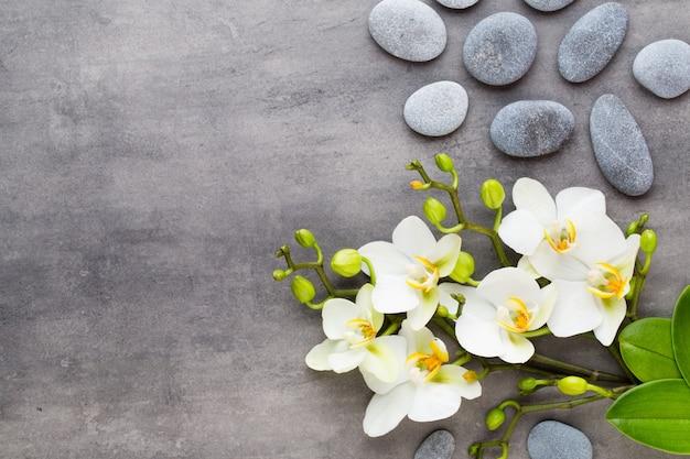 Orchideen- und spa-steine auf stein. flay lag