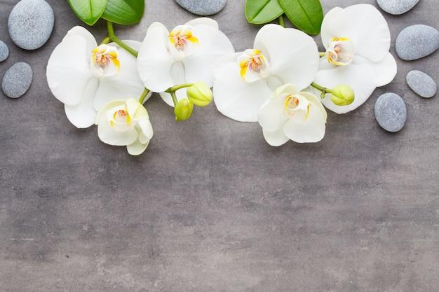 Orchideen- und spa-steine auf stein. spa- und wellnessszene.