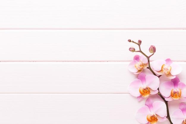 Orchideenblüte auf dem hölzernen pastellhintergrund. spa- und wellnessszene.
