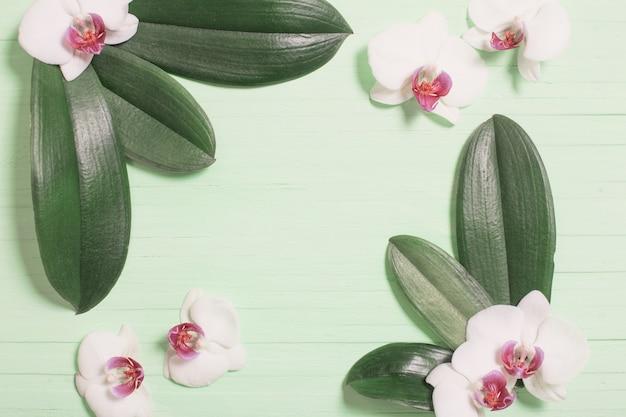 Orchideenblüten und exotische blätter auf grünem holz