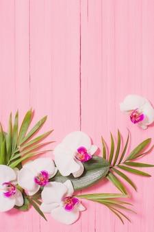 Orchideenblüten und exotische blätter auf rosa holz