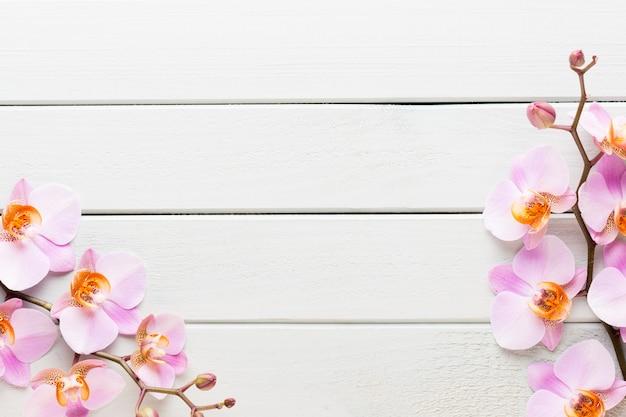 Orchideenblume auf dem hölzernen pastell.