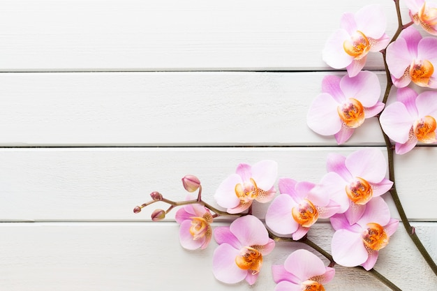 Orchideenblume auf dem hölzernen pastellhintergrund. spa- und wellnessszene.