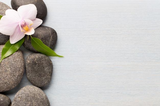 Orchideenblume auf holz mit spa-steinen