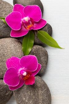 Orchideenblume auf holzoberfläche mit spa-steinen.