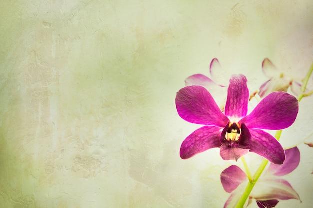 Orchideenblume mit weinlesehintergrund.