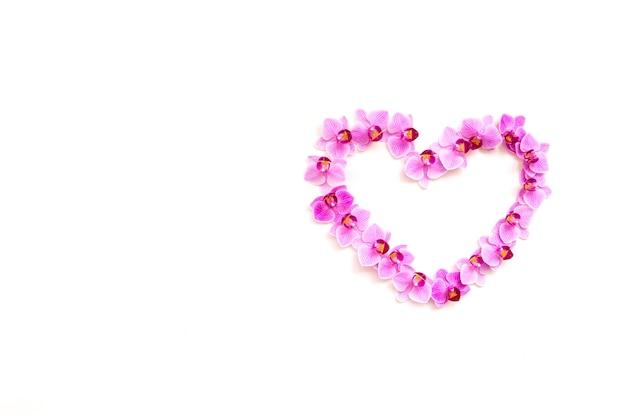 Orchideenblumen auf einem weißen hintergrund in der form eines herzens. die blüten sind lila gefärbt. leerer raum für den text. blumenhintergrund und textur. das konzept des valentinstags und des 8. märz.