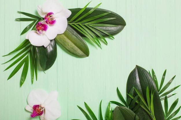Orchideenblumen und exotische blätter auf grünem hölzernem hintergrund