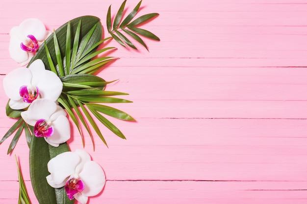 Orchideenblumen und exotische blätter auf rosa hölzernem hintergrund