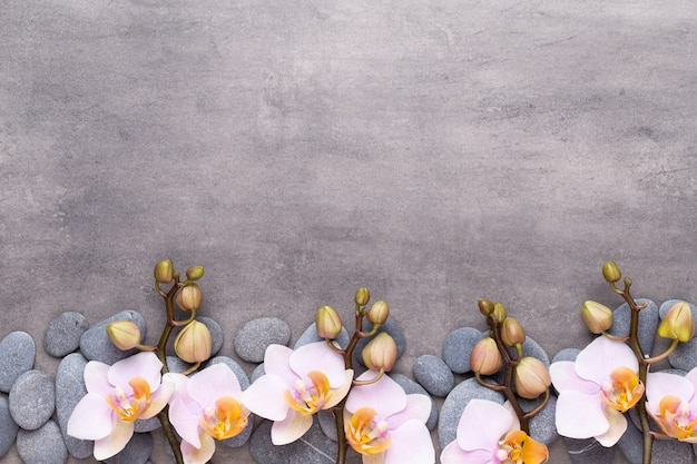 Orchideenschönheitsblumen auf weinlese-tabelle