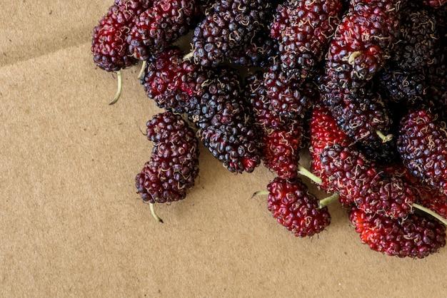 Organische maulbeerfrucht, schwarze reife und rote unausgereifte maulbeeren