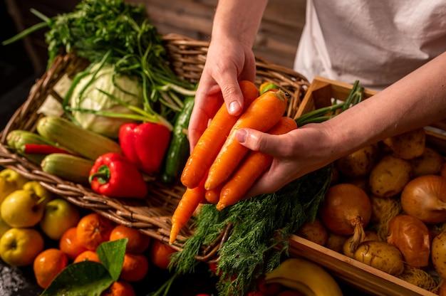 Organisches gemüse. bauernhände mit frisch gepflückten karotten. frische bio-karotten. obst- und gemüsemarkt