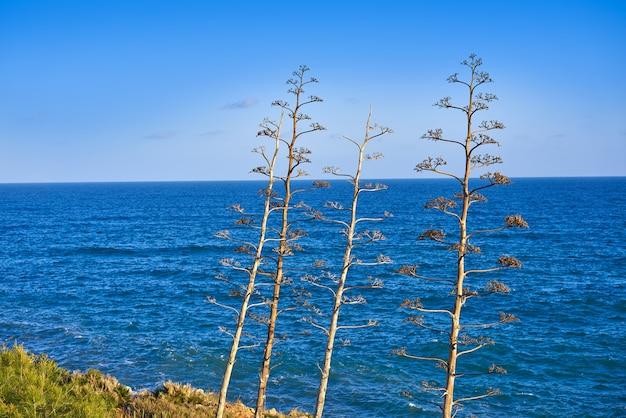 Oropesa de mar in castellon mittelmeer