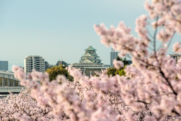 Osaka castle mit kirschblüte in osaka; japan. japan frühling schöne szene.