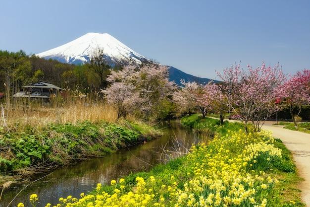 Oshino hakkai-dorf mit sakura und fujisan