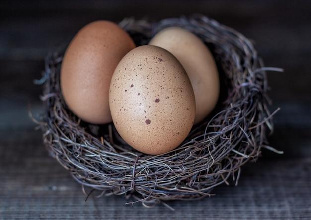 Ostereier in der nestnahaufnahme