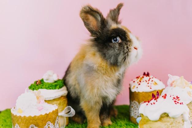 Osterhase mit farbigen pastellfarbenen eiern und süßen cupcakes und osterkuchen. osterferienkonzept