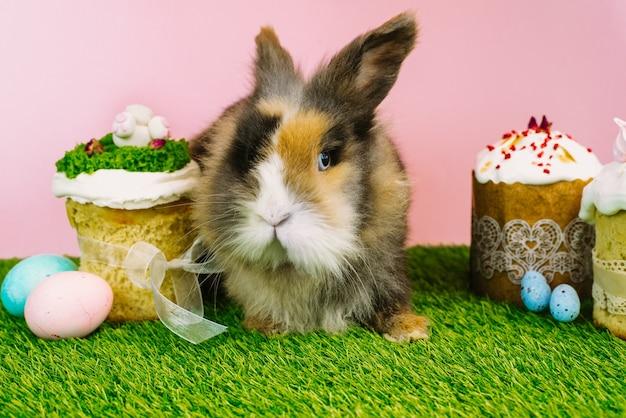 Osterhasen-kaninchen mit farbigen pastellfarbenen eiern auf einem rosa hintergrund und frischem gras.