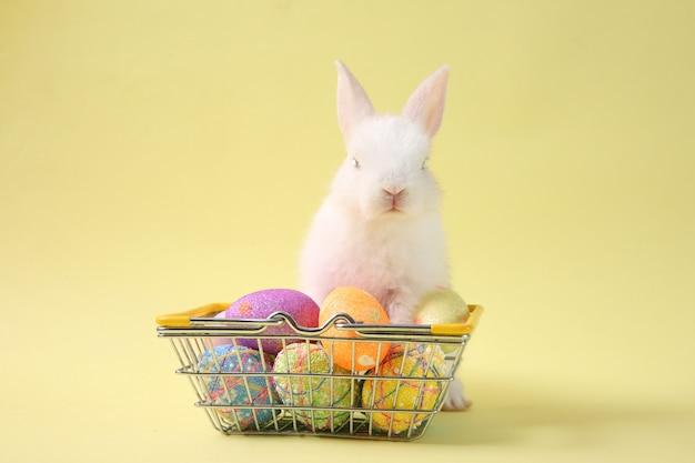 Osterhasen-kaninchenweiß mit gemaltem ei im hölzernen korb