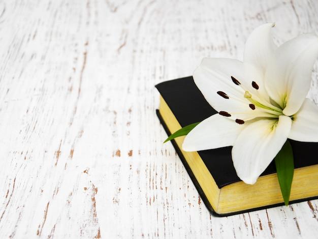 Osterlilie und bibel