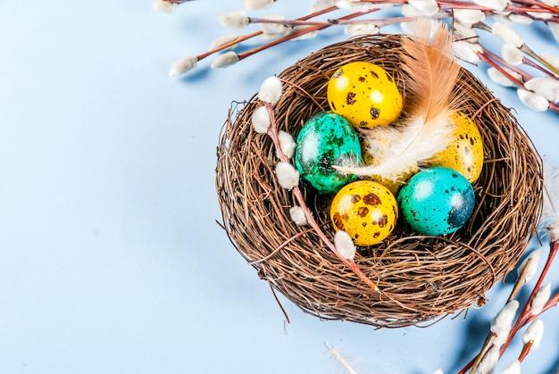 Ostern mit vogelnestern, mit eiern und frühlingsblumen weidenkätzchen, blaues copyspace