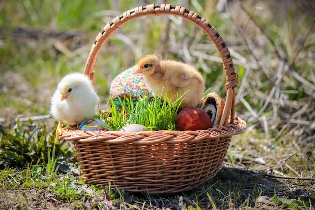 Ostern. osterdekorationen in einem korb. frühling. selektiver fokus