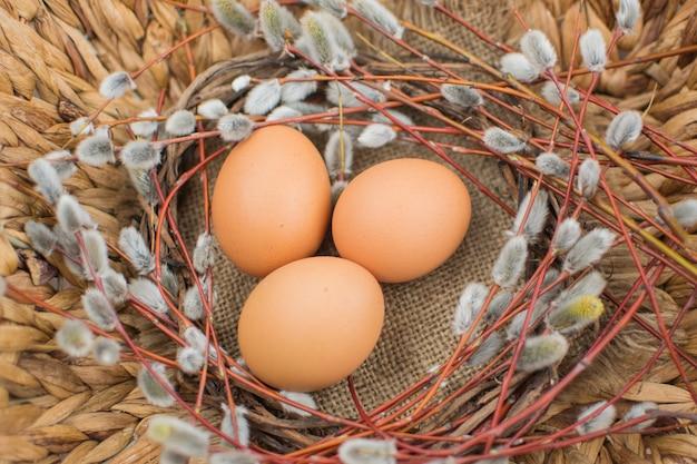 Osterstilleben. weidenzweige mit eiern. ostereier. eier für ostern