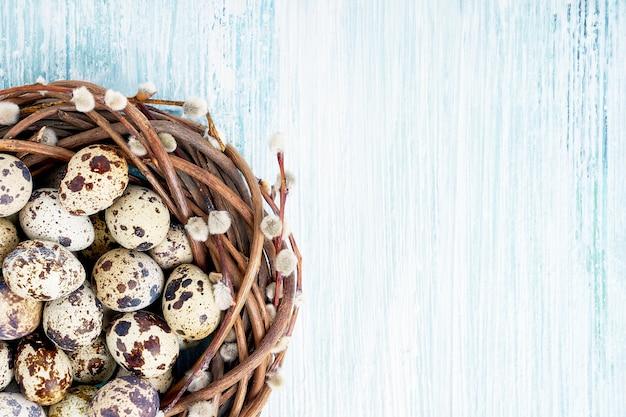 Osterweidenkranz und wachtel-ostereier auf hellblau. draufsicht, kopierraum