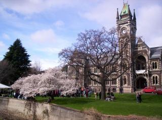 Otago university studenten protestieren