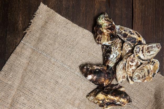 Oyster shelss closeup auf serviette