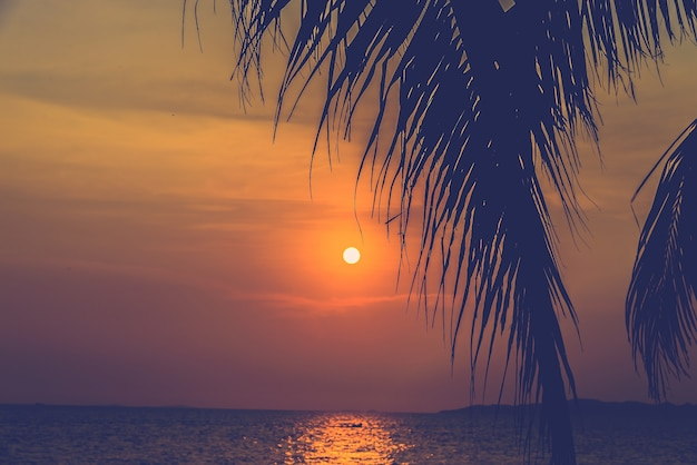 Ozean bäume retro hügel schön