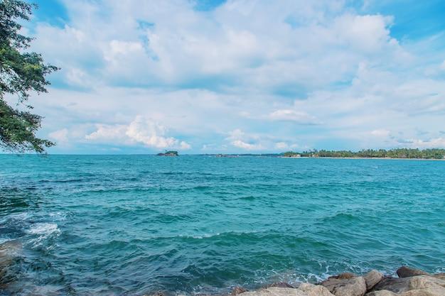 Ozean sri lanka. natur und palmen.
