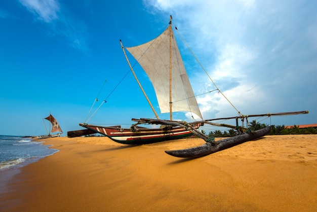 Ozeanküste von sri lanka in den tropen