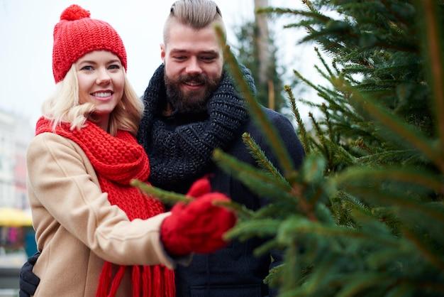 Paar, das frischen weihnachtsbaum kauft