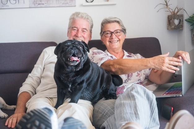 Paar glückliche kaukasische reife erwachsene leute mann und frau, die auf der couch mit einem laptop und einem schwarzen lustigen mopshund über ihm sitzen und die kamera mit verrücktem ausdruck betrachten. paar, das spaß hat