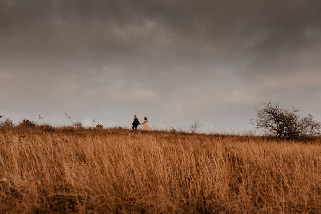 Paar in der hochzeit, die jungvermählten in einem weißen kleid und anzug verliebt, gehen im sommer auf langem gras auf einem feld spazieren