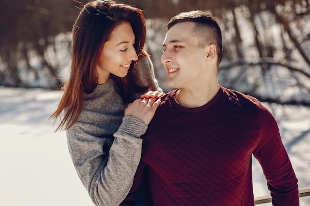 Paar in einem winterpark