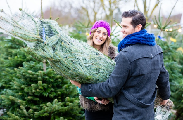 Paar mit gekauften weihnachtsbaum