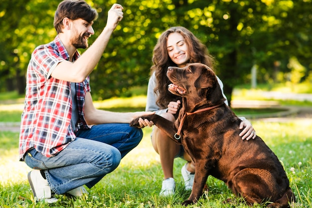 Paare, die mit ihrem hund im park spielen