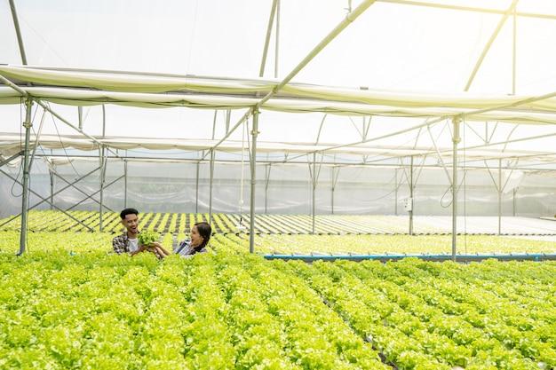 Paare im geschäft mit bio-gemüse mit holzkorb ernte um auf dem markt verkauft zu werden